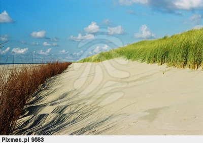 Sandy Dune, Netherlands, North Sea